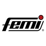 femi_logo_9